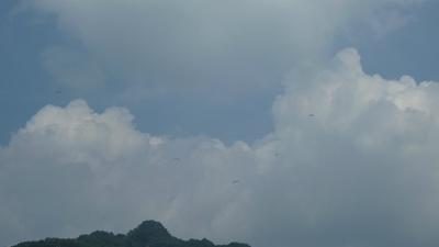 上昇気流に群がるパラグライダー