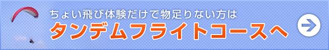 banner_aandemflight.jpg